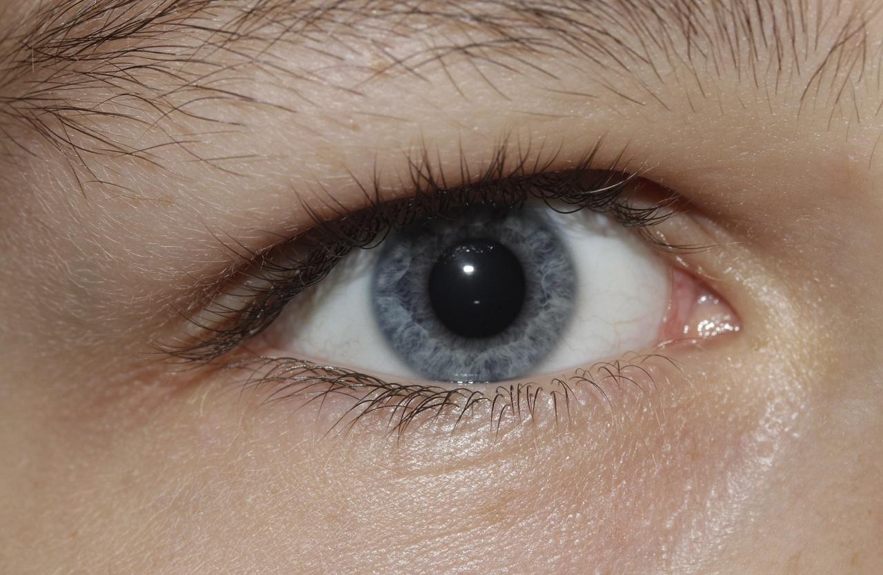 Observer les yeux