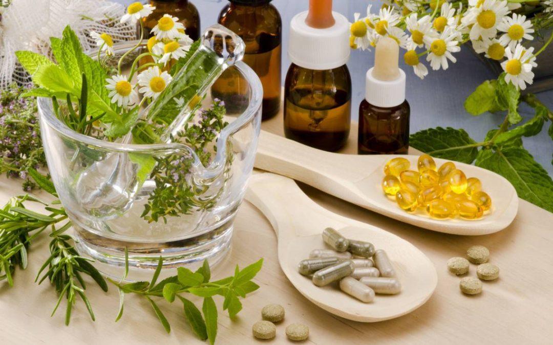 Phytothérapie : les plantes au service de notre bien-être