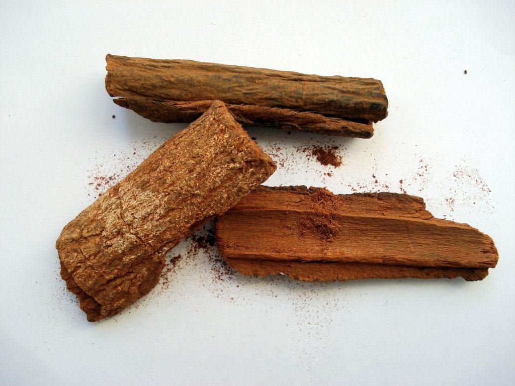 morceaux d'écorce du écorce du quinquina