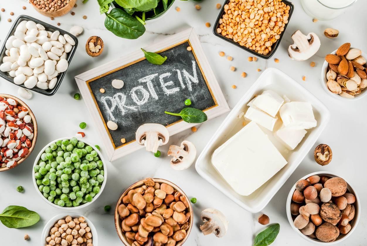 que valent les protéines végétales